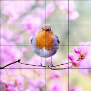Tile Puzzles · Spring-SocialPeta