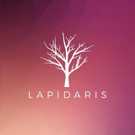 Lapidaris-SocialPeta