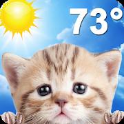 Weather Kitty-SocialPeta