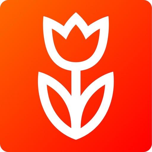 Flowwow Цветы: доставка цветов-SocialPeta