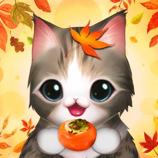 고양이 다방-SocialPeta