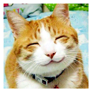 Funny Animal Pics-SocialPeta