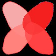 엑스플랜트-식물,다육식물,다육이,리톱스,하월시아,공기정화식물,선인장,꽃,모종,씨앗 키우기-SocialPeta