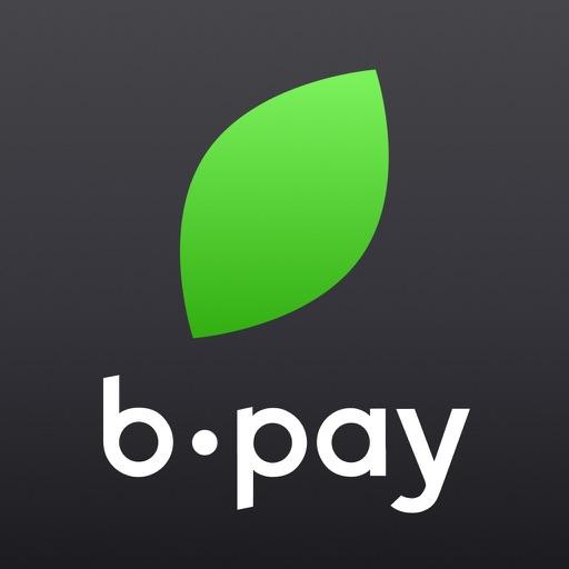 Плати без очередей - B-Pay-SocialPeta