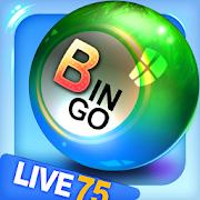 Bingo City Live 75+Vegas slots-SocialPeta